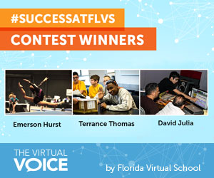 2015 FLVS Contest winners