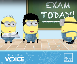 Minions in the Classroom