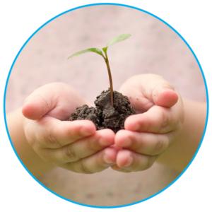 Blog_Earth_Day_Tree
