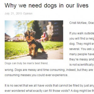 Why we need dogs in our lives